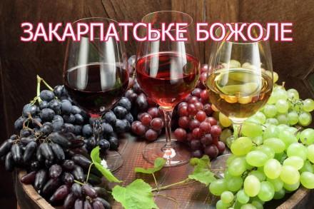 Вкарпатах.in.ua